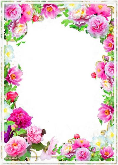 PSD Frame for photoshop - Wonderful flowers pi-mesons