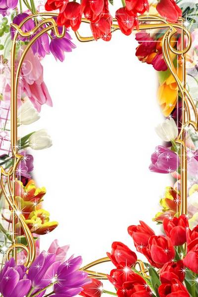 Festive frame for March 8 - Beautiful tulips