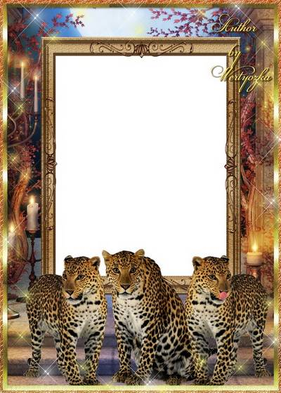 Frame for Photoshop - Leopards and the magic of the night
