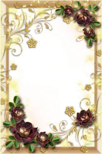 Glamour Frame for Photoshop - Gold and Roses