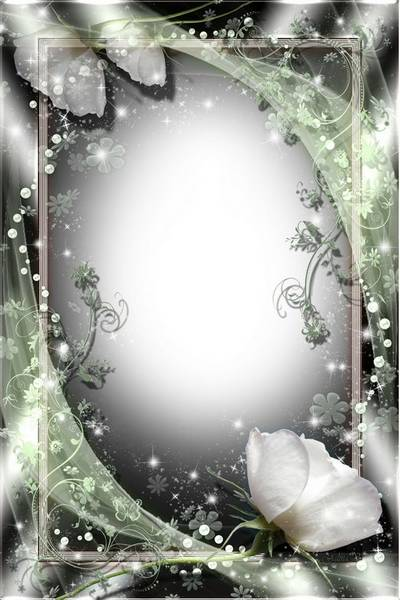 Stylish Frame for Photoshop - White Rose