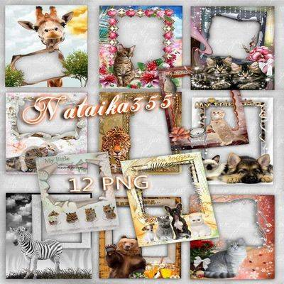 12 png photo frames with different animals - cats, dogs, bear, zebra, tiger and giraffe - free photoshop frame animals