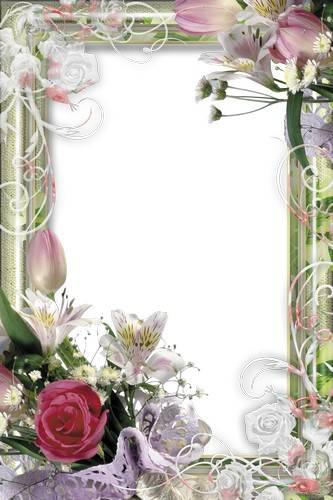 Collection of floral frames - Beautiful flowers - 122 PNG | 10 x 15 | 300 dpi | 1,25 GB Free Download
