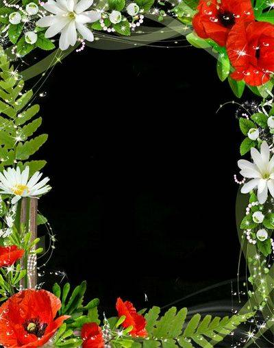 Floral Photoshop Frame template with Red poppies