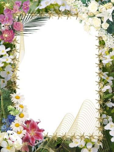 A collection framework - Let the sun shine all over you and smiling flowers