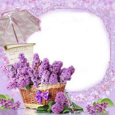 Photoshop photo frame template with clusters of delicate lilac