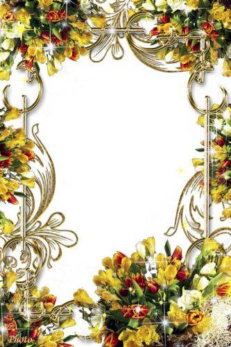 Set of flower framework for photo - Luxury