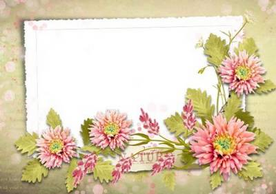 Romantic frames for Photoshop - Summer flowers