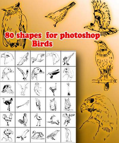 Birds - 80 Photoshop Shapes
