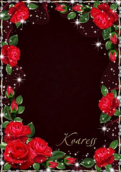 Photo frame - The charm of red roses