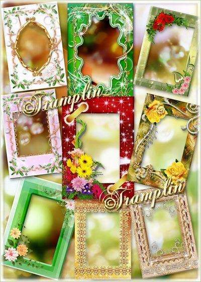 Collection of floral frames - Multi-colored flowers
