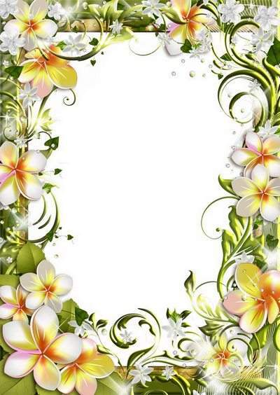 Frames - How gentle white flowers, look right into your soul
