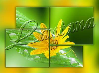 Polyptych in PSD - Yellow flowers on a green background