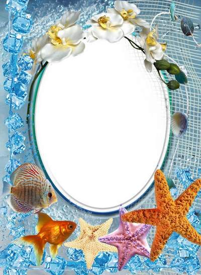 Marine frame with an orchid, fishes and asterisks