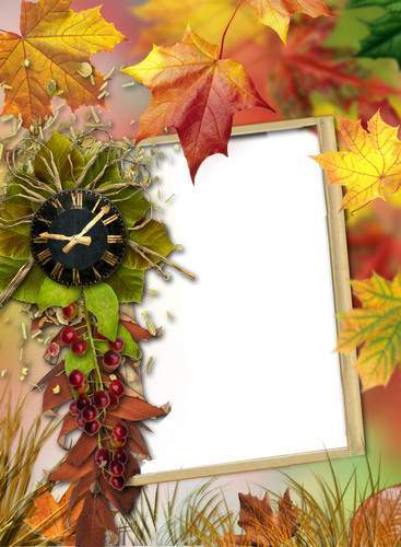 Autumn collection of frames from Lantana - Is in the autumn of its charm