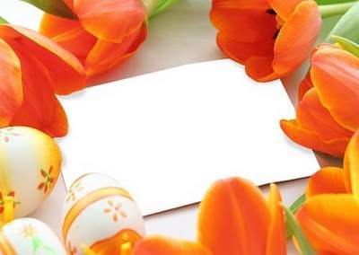 Photoshop frame psd template with tulips