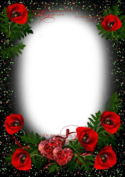 Frame for romantic photos with red poppies - In this world just you and me
