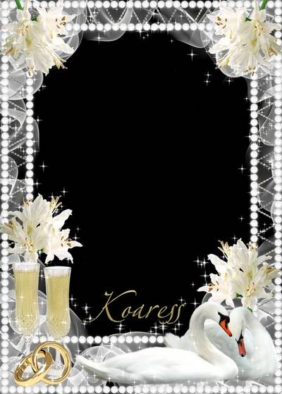 Romantic wedding frame for Photoshop - White roses, white swans
