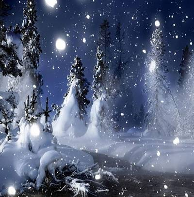 Winter backgrounds Jpg  – In white forest 55 Jpg, 5612x3724 px