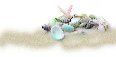 Maritime clusters on a transparent background - Sea, sand, fish, shells