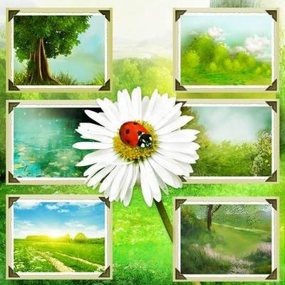 Nature backgrounds 80 JPG, 3600х3600 px, free download