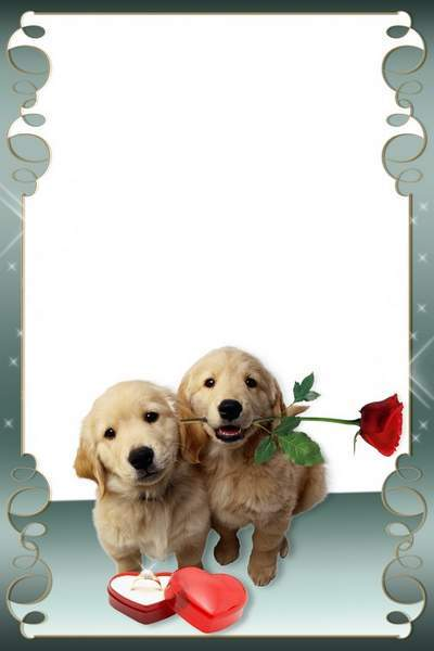 Romantic frame for photo - Love as old wine