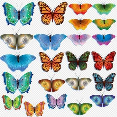 Butterfly Clipart PSD - colorful beautiful butterfly free download