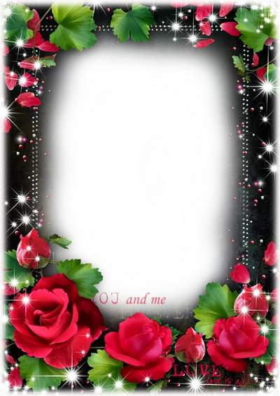 Red roses photo frame psd template free download