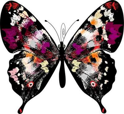 Butterfly Clipart png download - 100 free png images
