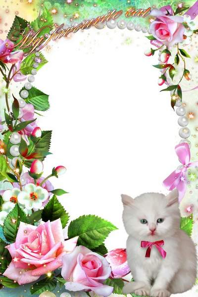 Photo Frame free download - My favorite kitten