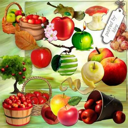 Apples Clipart download - 136 free png images Apples on a transparent background