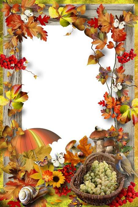 Autumn frame for the photo - Golden leaf fall