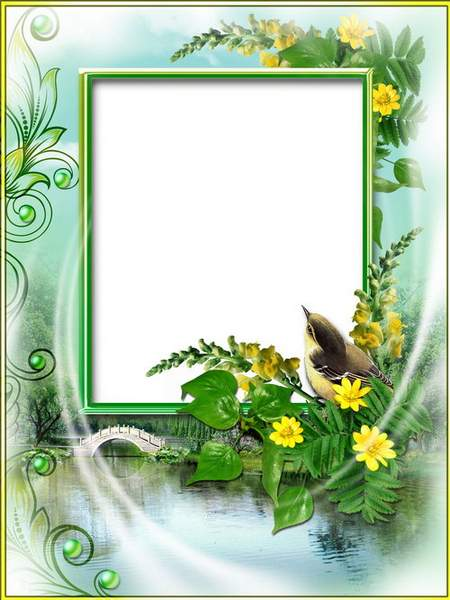 summer Photo frame with cornflowers - The summer dreams