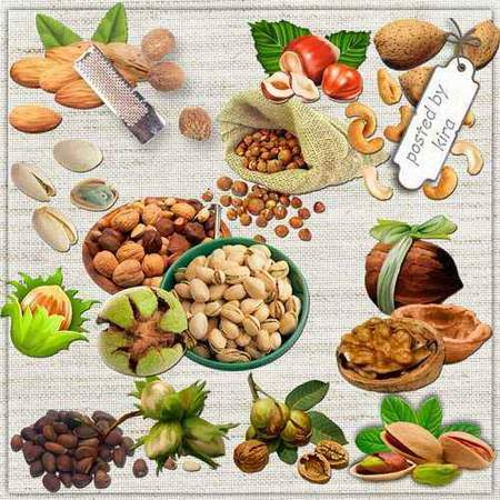 Nuts clipart download - hazelnuts, walnuts 61 free png images