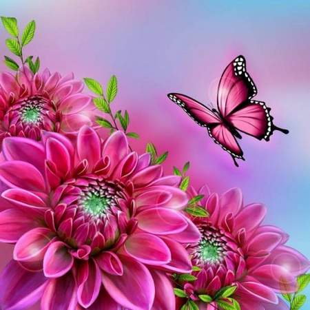 Free psd  source download - flower Dahlia and butterfly