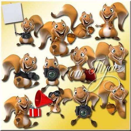 Funny squirrels clipart download - free psd file