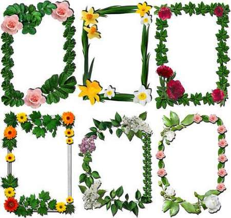 16 Flower frames png free download