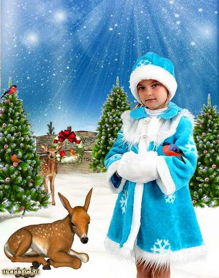 New-year child's template is Little snow Maiden