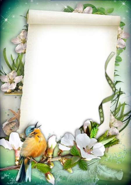 Free Photo frame template with bird download - free frame psd + free frame png