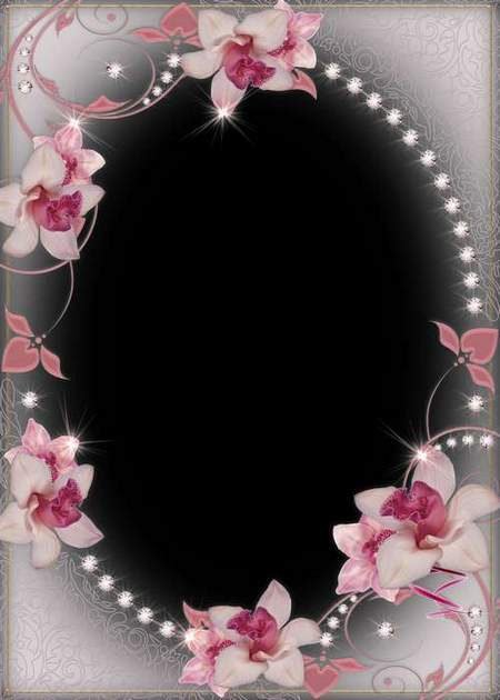 Pink orchids flower frame psd download