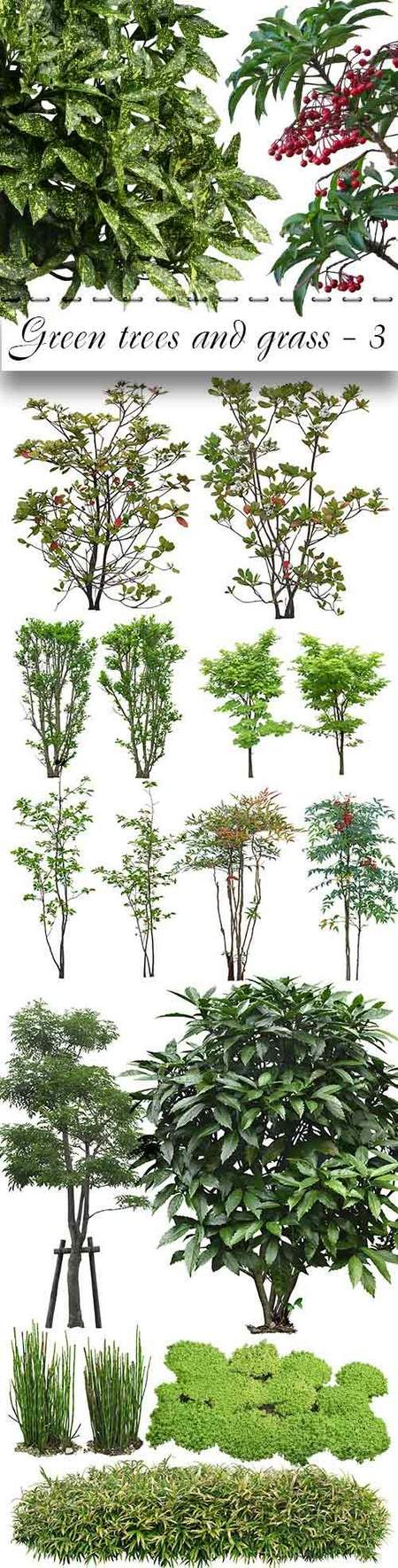 Green trees psd and grass psd - free 25 psd files, free download