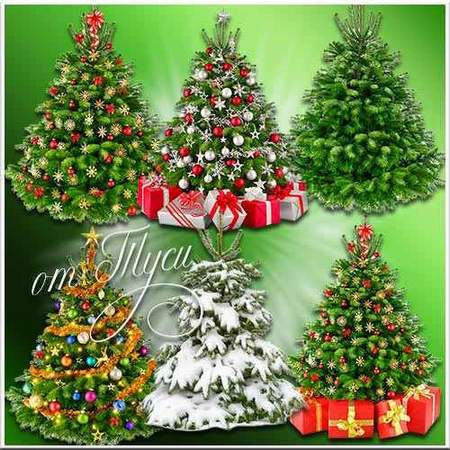 Free Christmas tree (transparent background) -  layered psd file free download