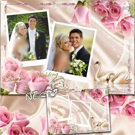 Elegant Wedding frame psd with a pair of swans, of pink roses on the two photographs