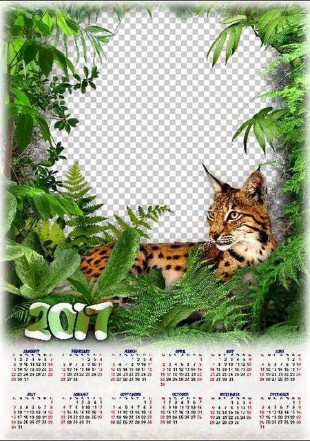 Nature Calendar with animals for 2017