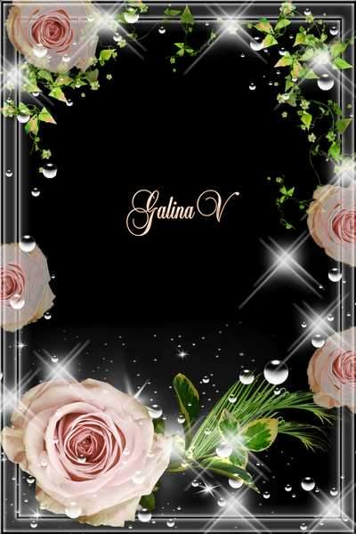 Flower frame psd - Rose, Beauty and Greatness Embodiment ( free photo frame psd + free photo frame png, free download )