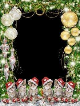 A set of Christmas frames png - Christmas festive direction and inspiration ( free 7 frames png, free download )