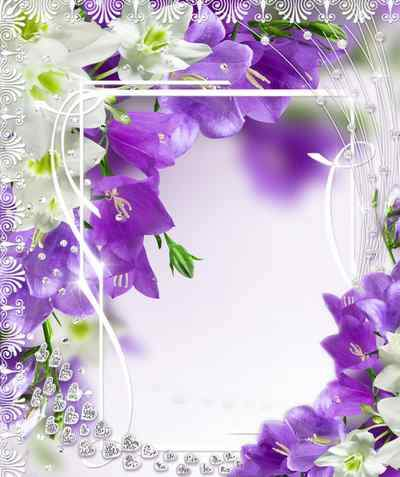 Floral Frame for photoshop - Delicate delusion ( free Floral photo frame psd, free download )