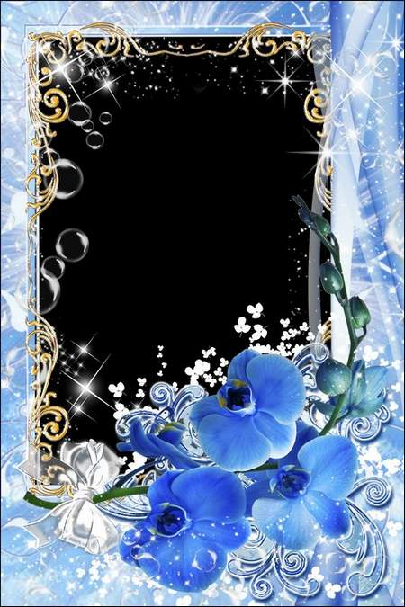 Flower photo frame - Heavenly Orchid ( free photo frame psd, free download )