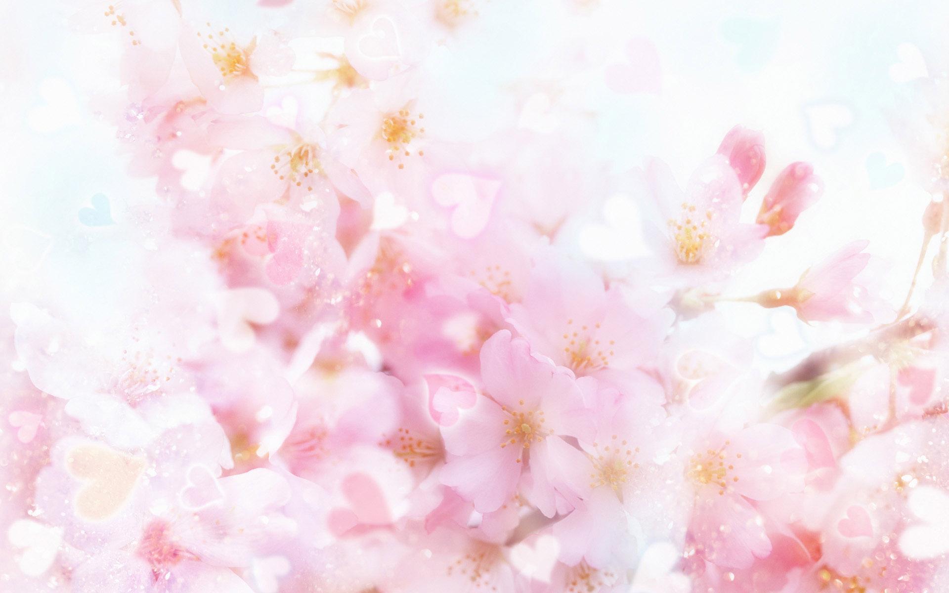 Фоны для фото с цветами